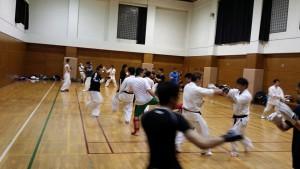 様々な武術・格闘技の手練れ達が集結!