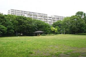 柳瀬川の館近隣公園。システマ南埼玉の発足当初は時々、この公園で練習していました。